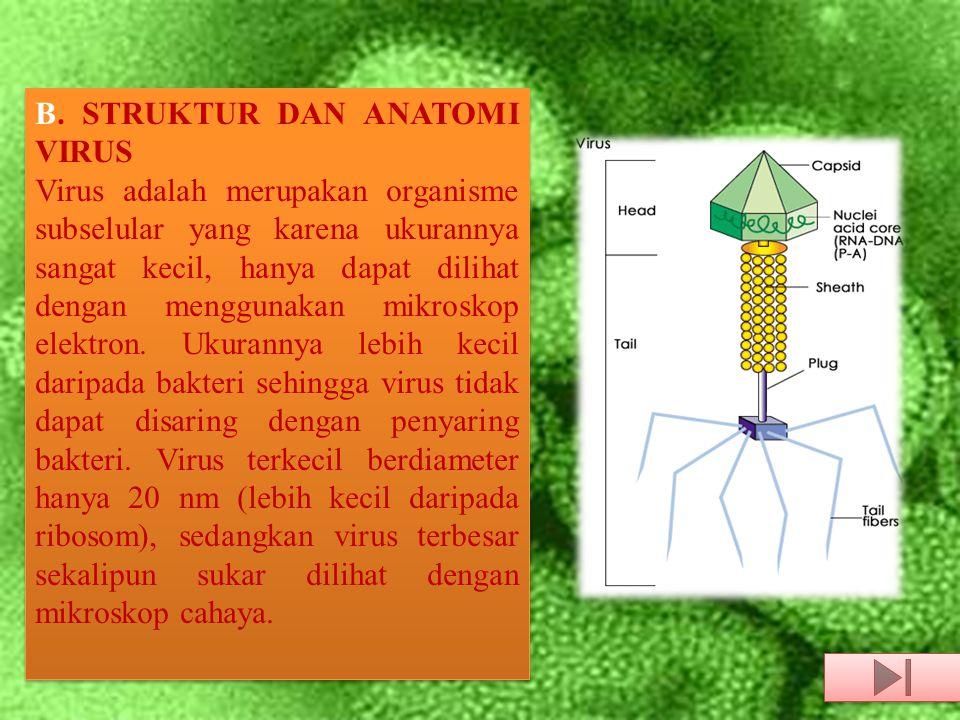 B. STRUKTUR DAN ANATOMI VIRUS