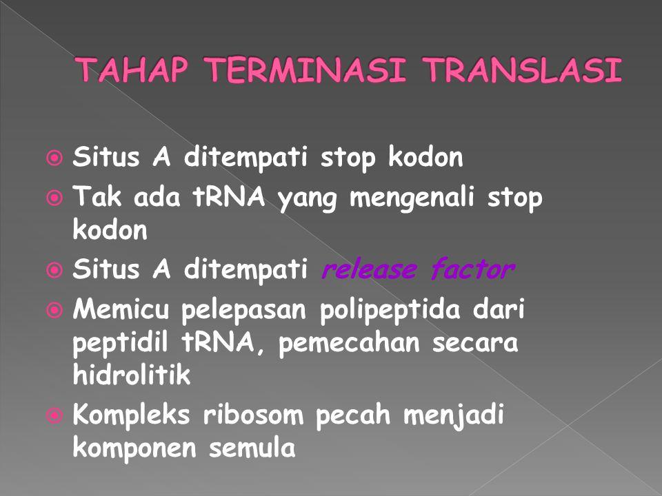 TAHAP TERMINASI TRANSLASI