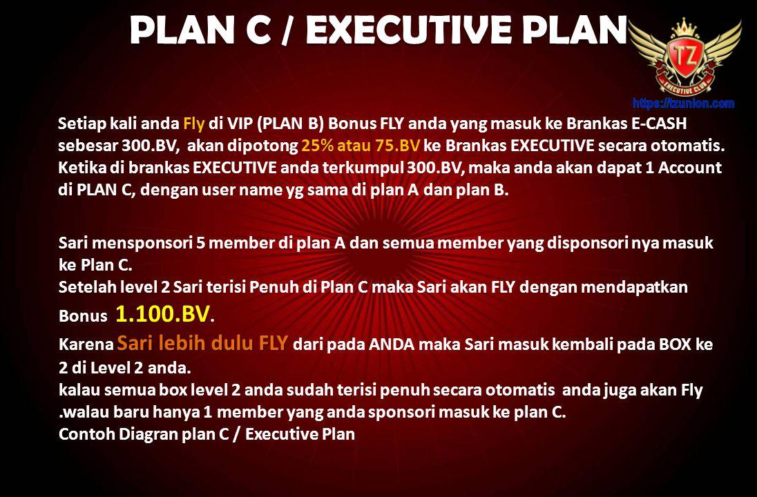 PLAN C / EXECUTIVE PLAN