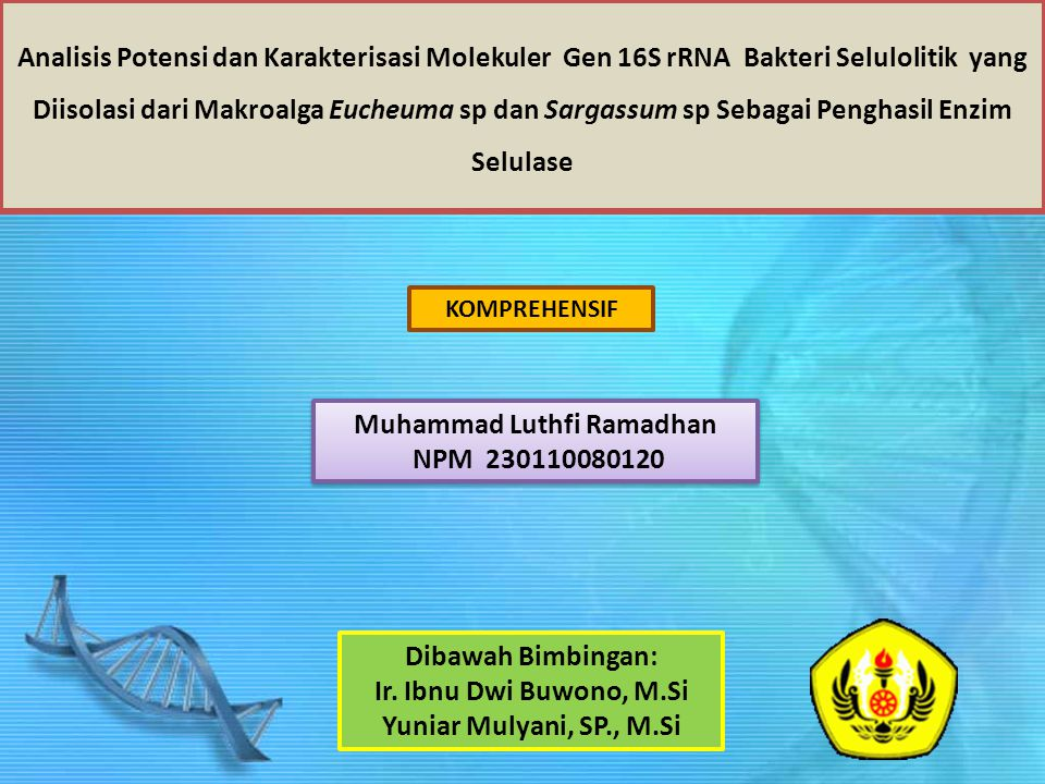 Analisis Potensi dan Karakterisasi Molekuler Gen 16S rRNA Bakteri Selulolitik yang Diisolasi dari Makroalga Eucheuma sp dan Sargassum sp Sebagai Penghasil Enzim Selulase