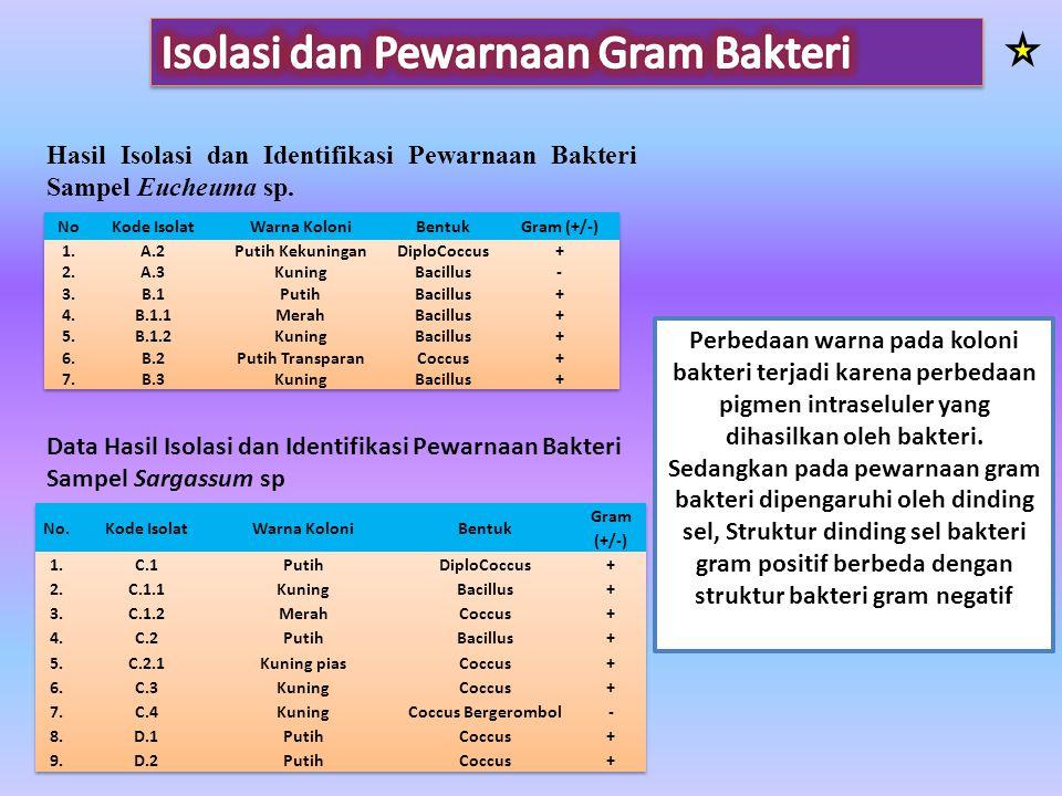 Isolasi dan Pewarnaan Gram Bakteri