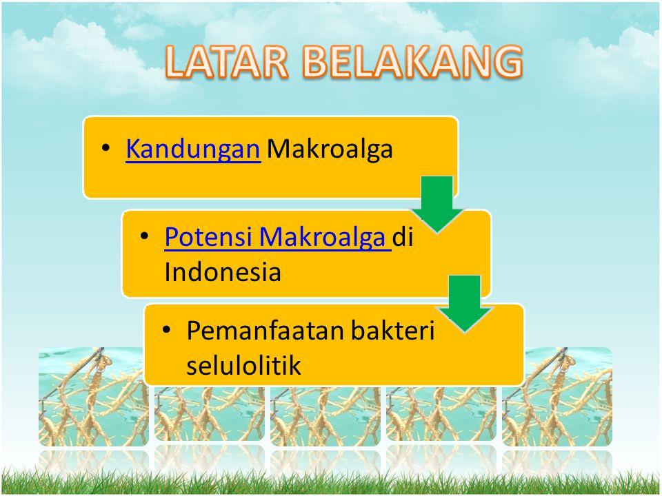 LATAR BELAKANG Kandungan Makroalga Potensi Makroalga di Indonesia