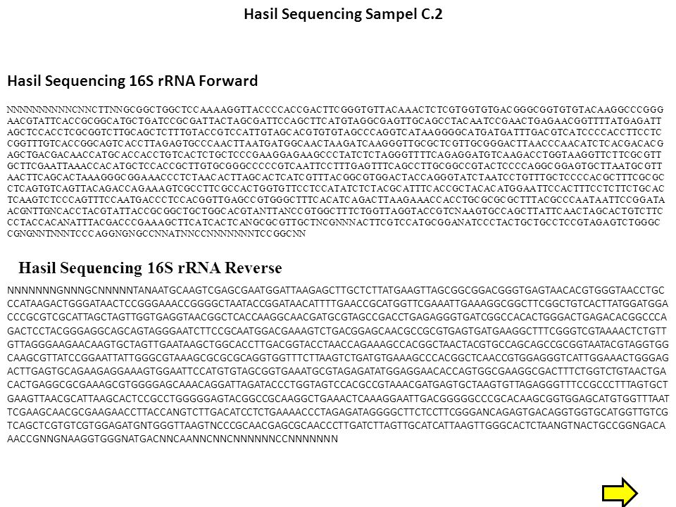 Hasil Sequencing Sampel C.2