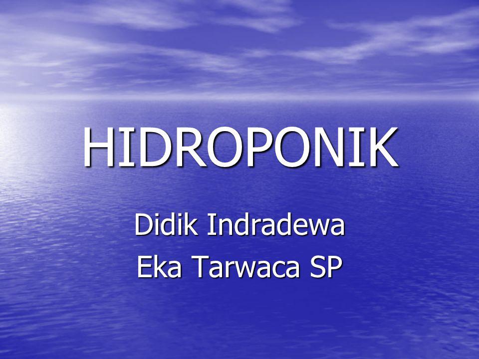 Didik Indradewa Eka Tarwaca SP