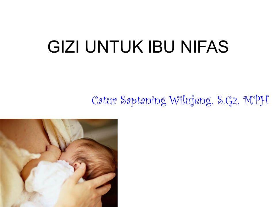 Catur Saptaning Wilujeng, S.Gz, MPH