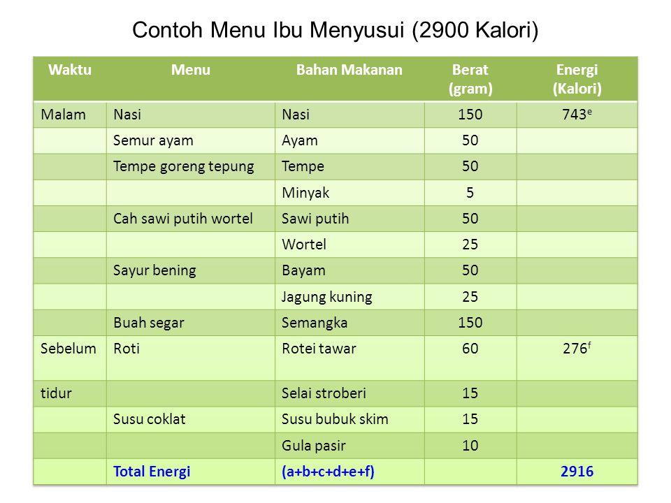 Contoh Menu Ibu Menyusui (2900 Kalori)
