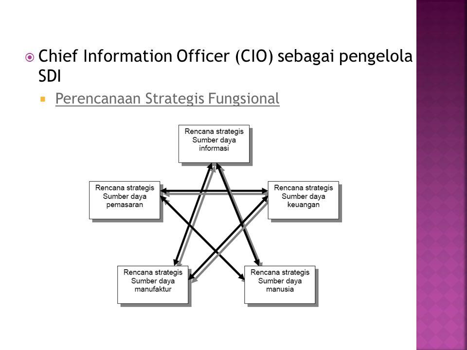 Chief Information Officer (CIO) sebagai pengelola SDI