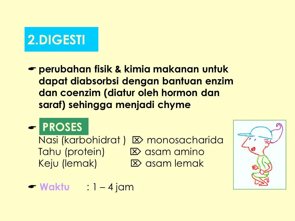 2.DIGESTI PROSES perubahan fisik & kimia makanan untuk