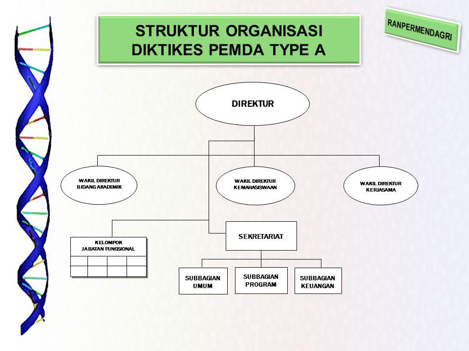 STRUKTUR ORGANISASI DIKTIKES PEMDA TYPE A