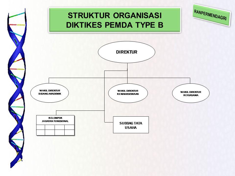 STRUKTUR ORGANISASI DIKTIKES PEMDA TYPE B