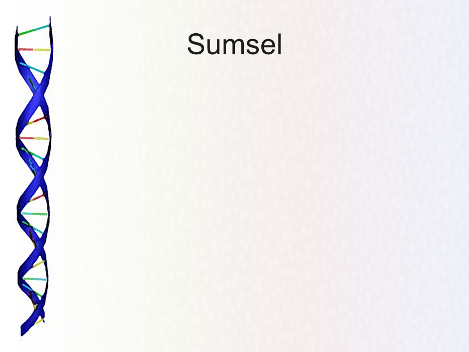 Sumsel