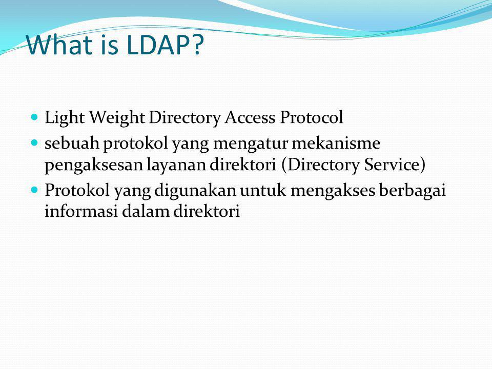 What is LDAP Light Weight Directory Access Protocol
