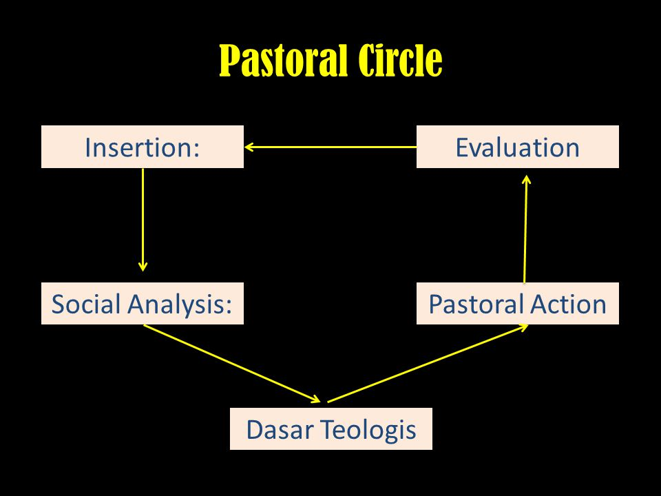 Pastoral Circle Insertion: Evaluation Social Analysis: Pastoral Action