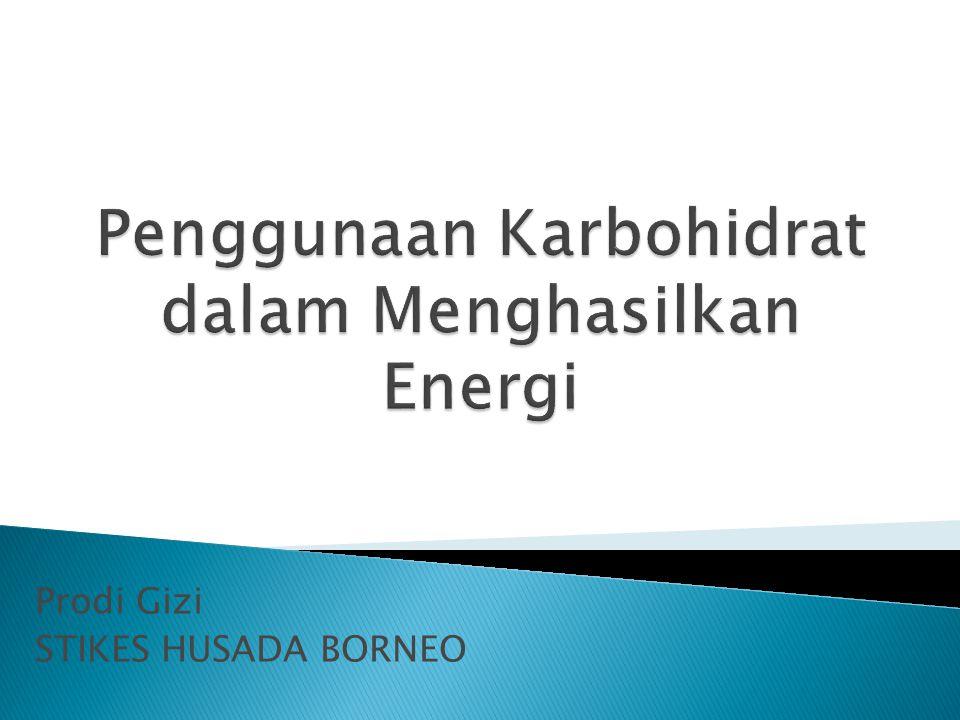 Penggunaan Karbohidrat dalam Menghasilkan Energi