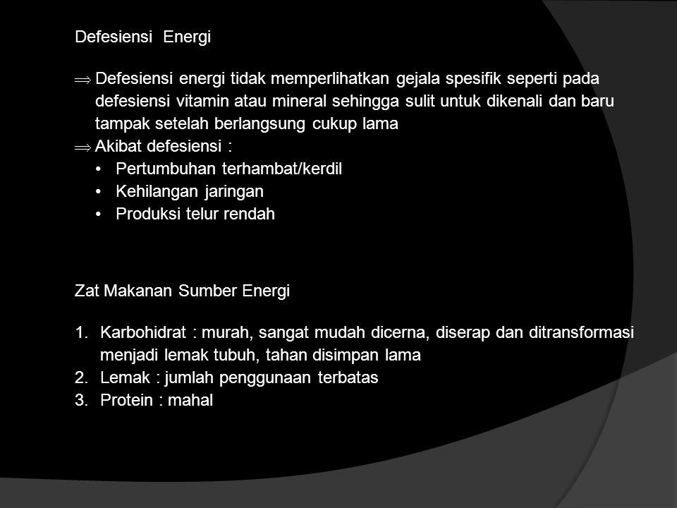 Defesiensi Energi