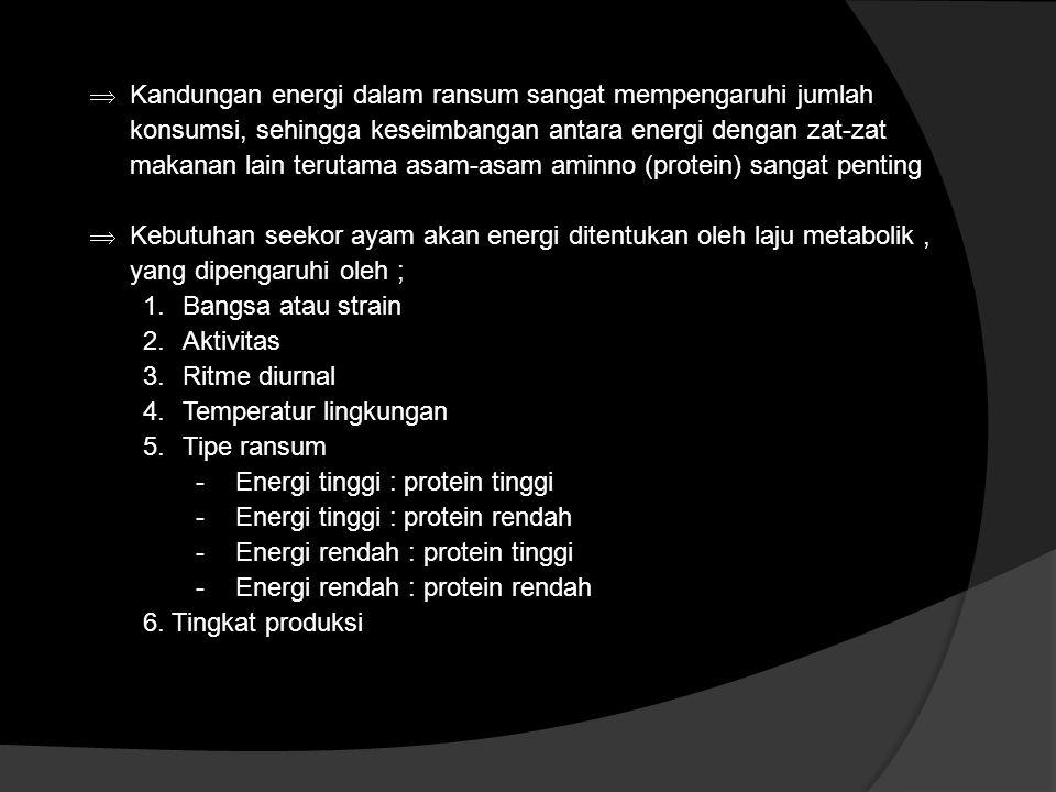 Kandungan energi dalam ransum sangat mempengaruhi jumlah konsumsi, sehingga keseimbangan antara energi dengan zat-zat makanan lain terutama asam-asam aminno (protein) sangat penting