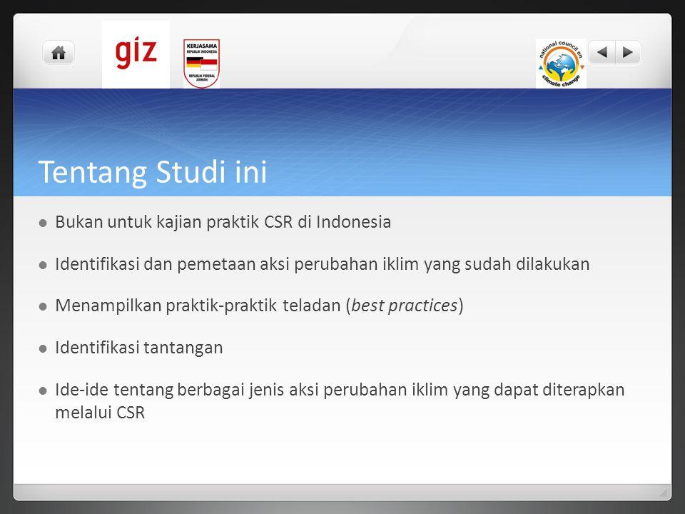 Tentang Studi ini Bukan untuk kajian praktik CSR di Indonesia