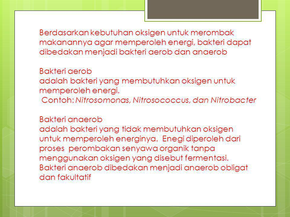 Berdasarkan kebutuhan oksigen untuk merombak makanannya agar memperoleh energi, bakteri dapat dibedakan menjadi bakteri aerob dan anaerob Bakteri aerob adalah bakteri yang membutuhkan oksigen untuk memperoleh energi.