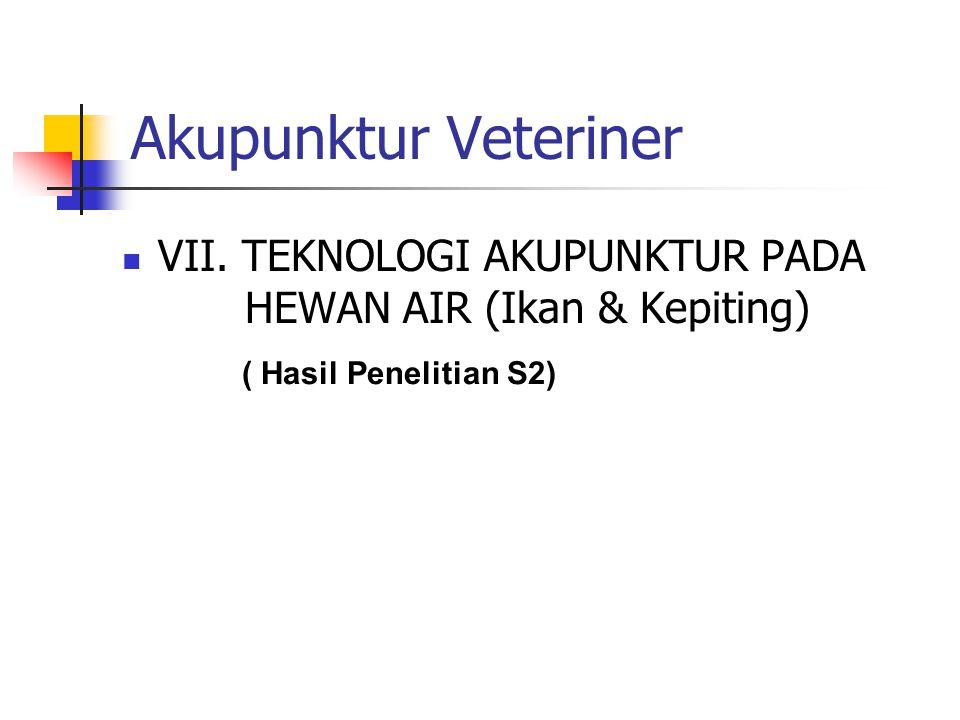 Akupunktur Veteriner VII.