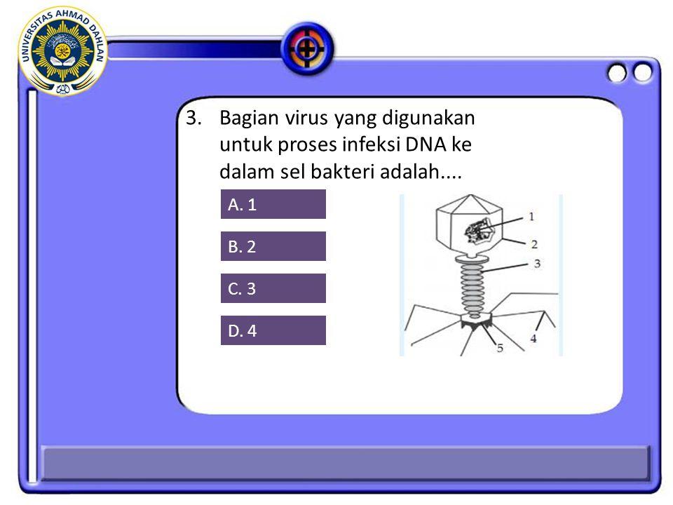 3. Bagian virus yang digunakan untuk proses infeksi DNA ke dalam sel bakteri adalah....