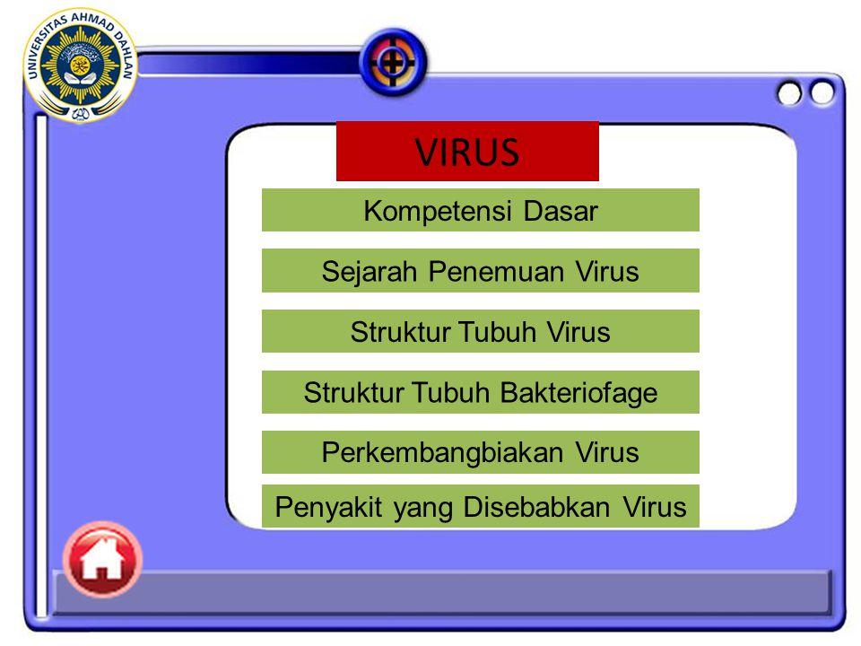 VIRUS Kompetensi Dasar Sejarah Penemuan Virus Struktur Tubuh Virus
