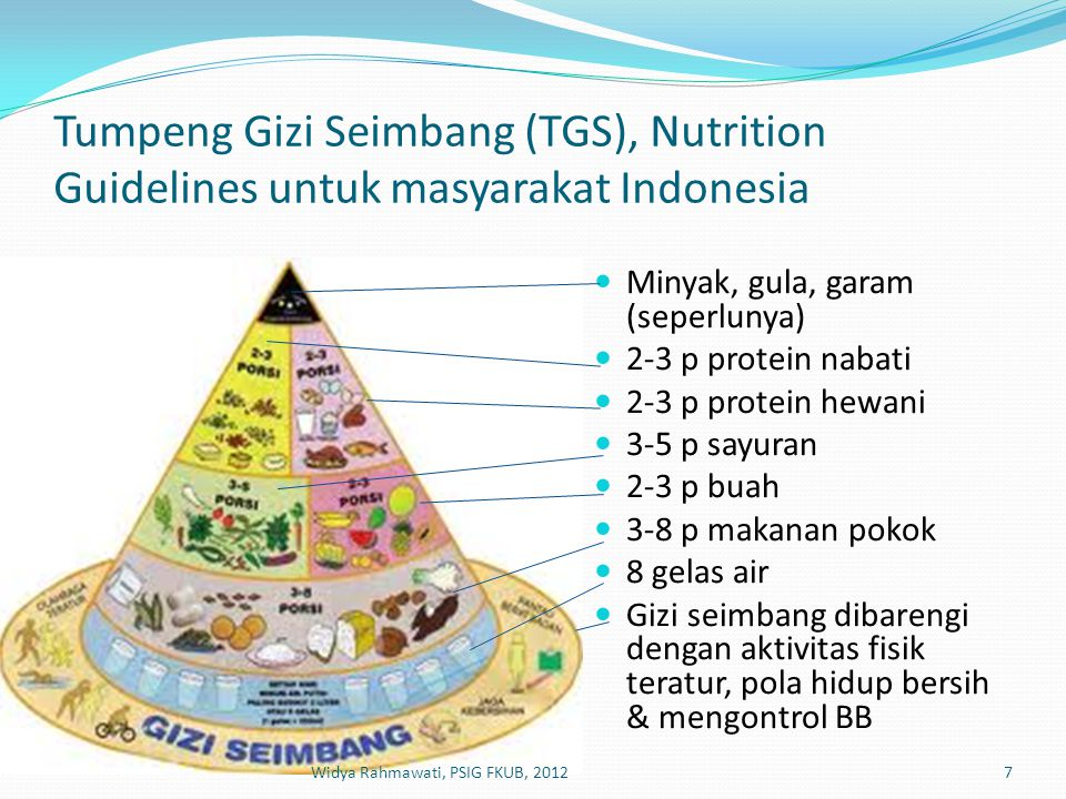 Tumpeng Gizi Seimbang (TGS), Nutrition Guidelines untuk masyarakat Indonesia