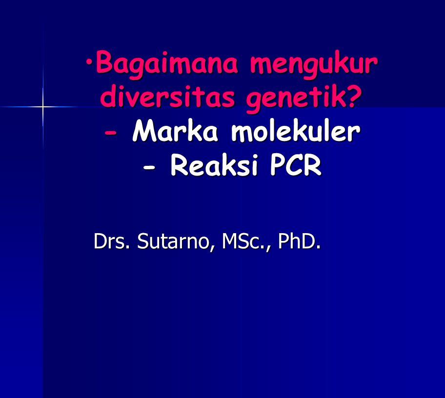 Bagaimana mengukur diversitas genetik - Marka molekuler - Reaksi PCR