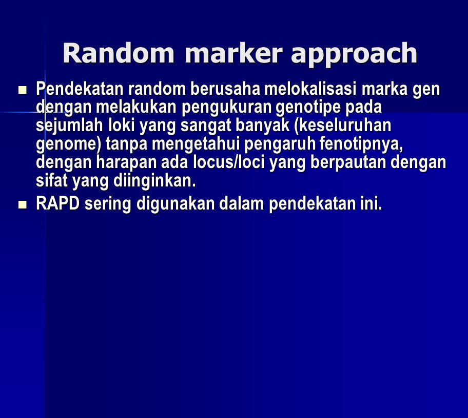 Random marker approach