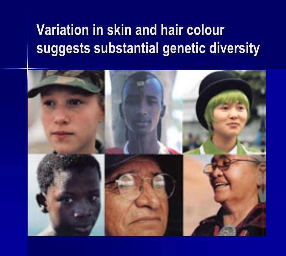 Variation in skin and hair colour suggests substantial genetic diversity