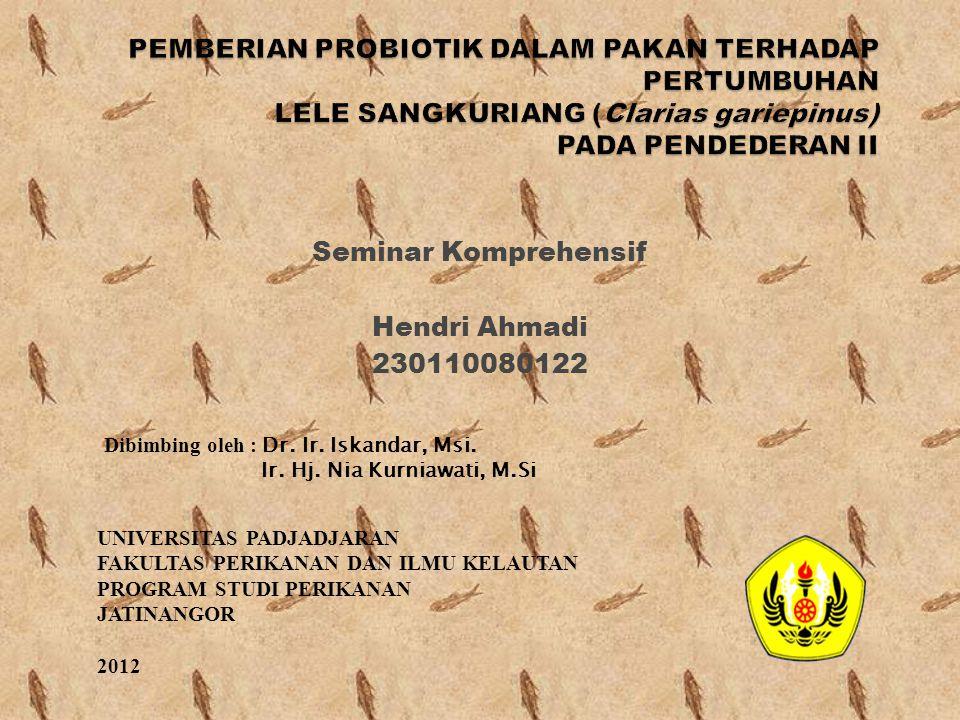 Seminar Komprehensif Hendri Ahmadi 230110080122