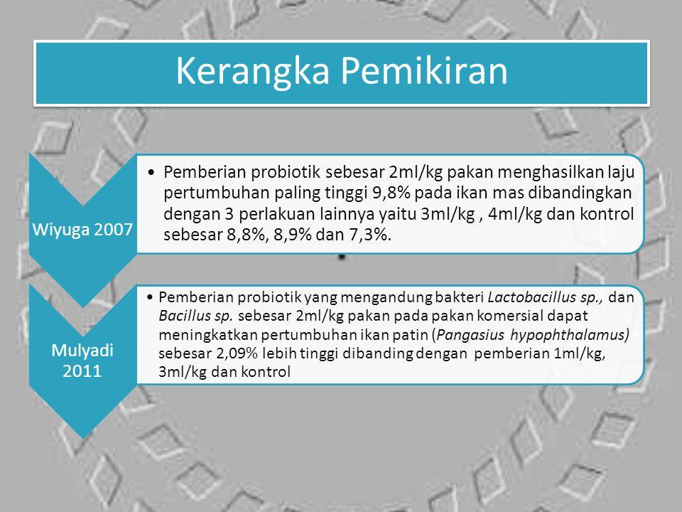 Kerangka Pemikiran Wiyuga 2007.