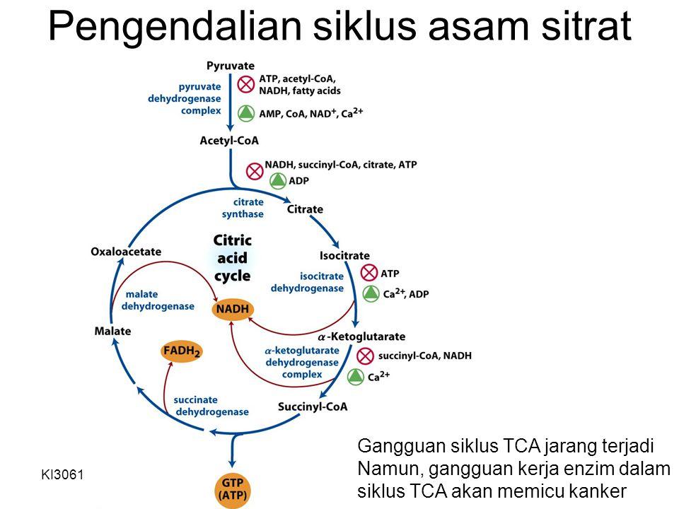 Pengendalian siklus asam sitrat