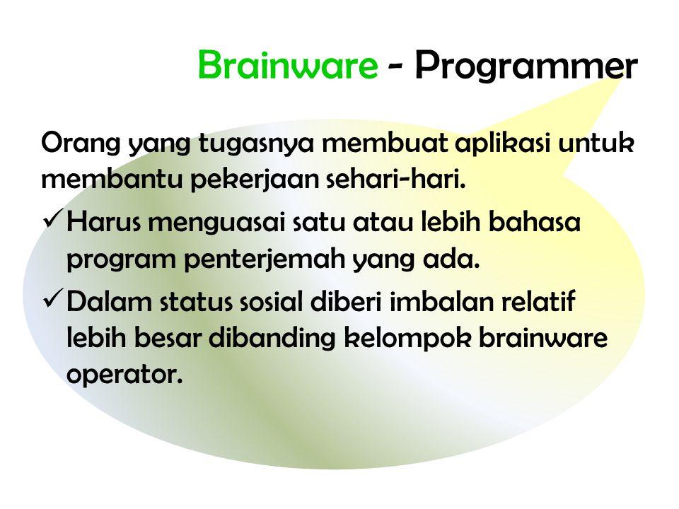 Brainware - Programmer