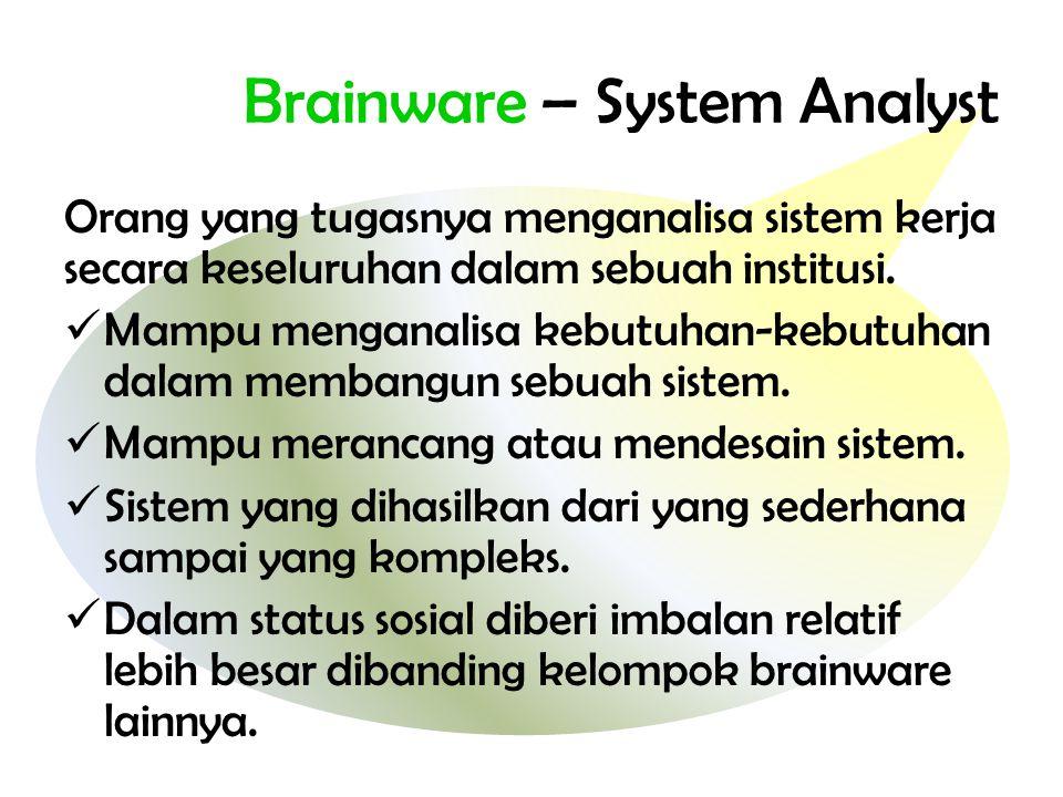 Brainware – System Analyst
