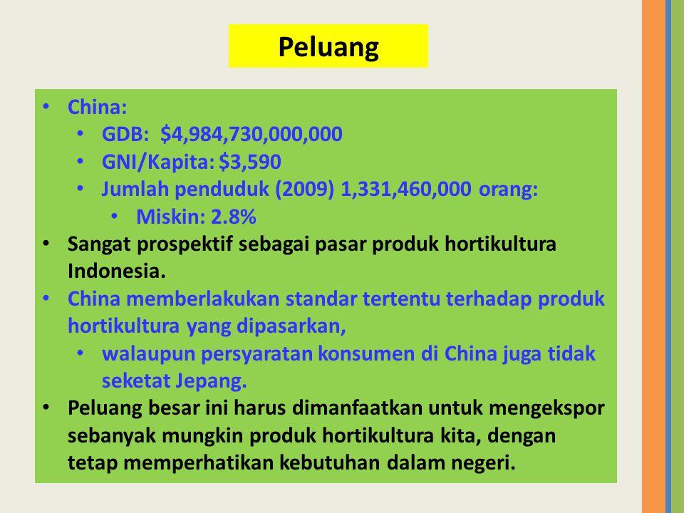 Peluang China: GDB: $4,984,730,000,000 GNI/Kapita: $3,590