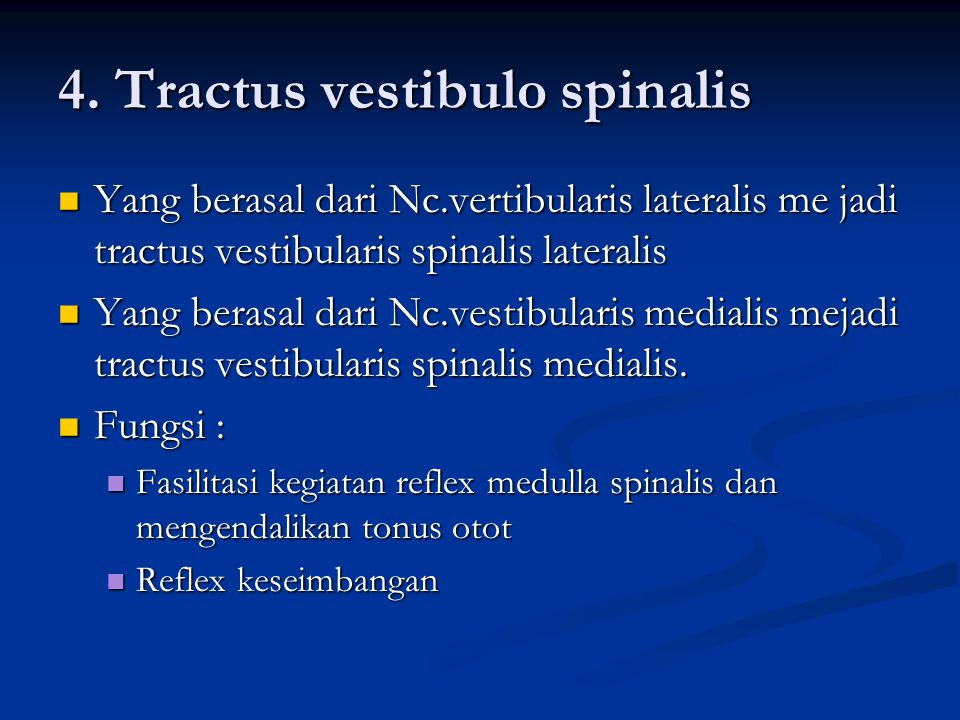 4. Tractus vestibulo spinalis
