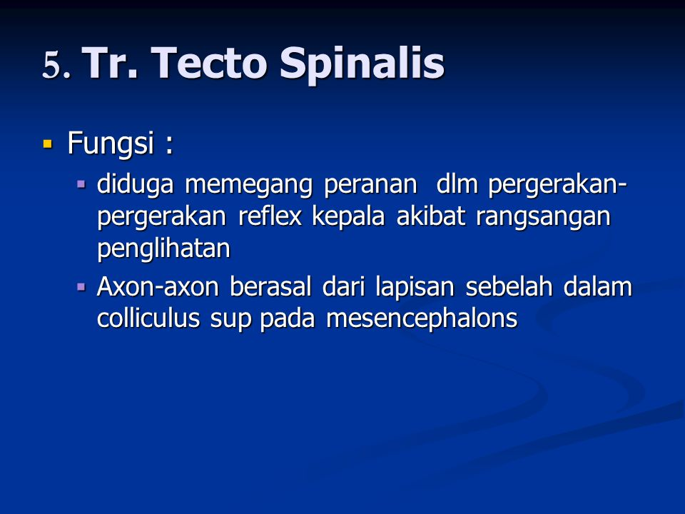 5. Tr. Tecto Spinalis Fungsi :