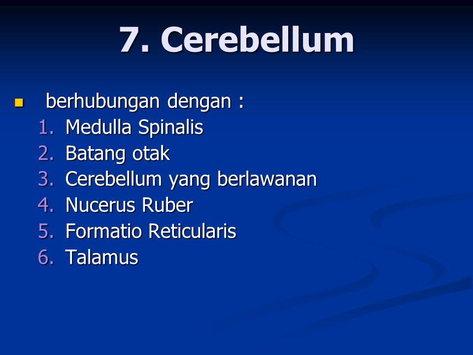 7. Cerebellum berhubungan dengan : Medulla Spinalis Batang otak
