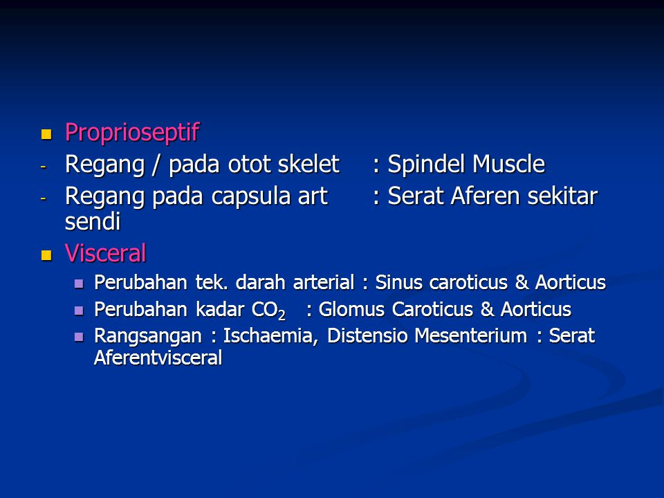 Regang / pada otot skelet : Spindel Muscle