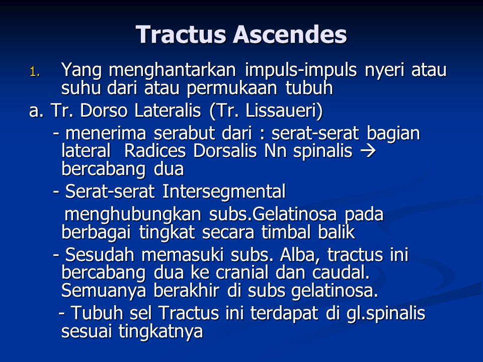 Tractus Ascendes Yang menghantarkan impuls-impuls nyeri atau suhu dari atau permukaan tubuh. a. Tr. Dorso Lateralis (Tr. Lissaueri)