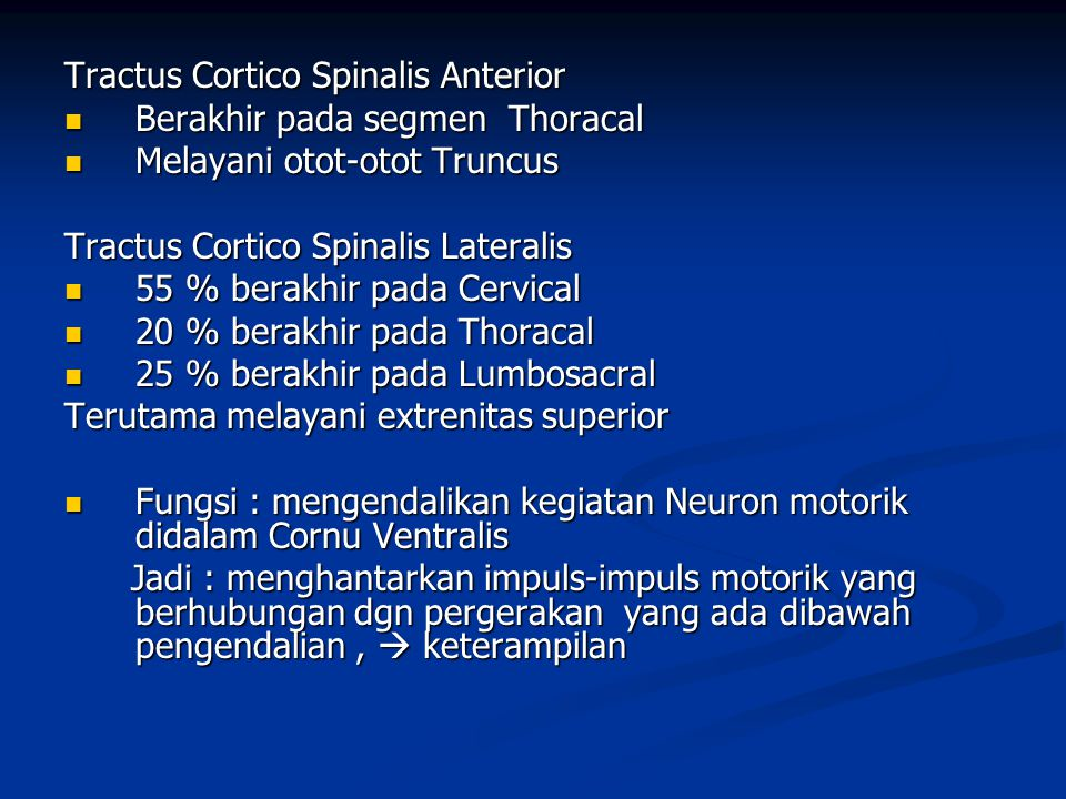 Tractus Cortico Spinalis Anterior