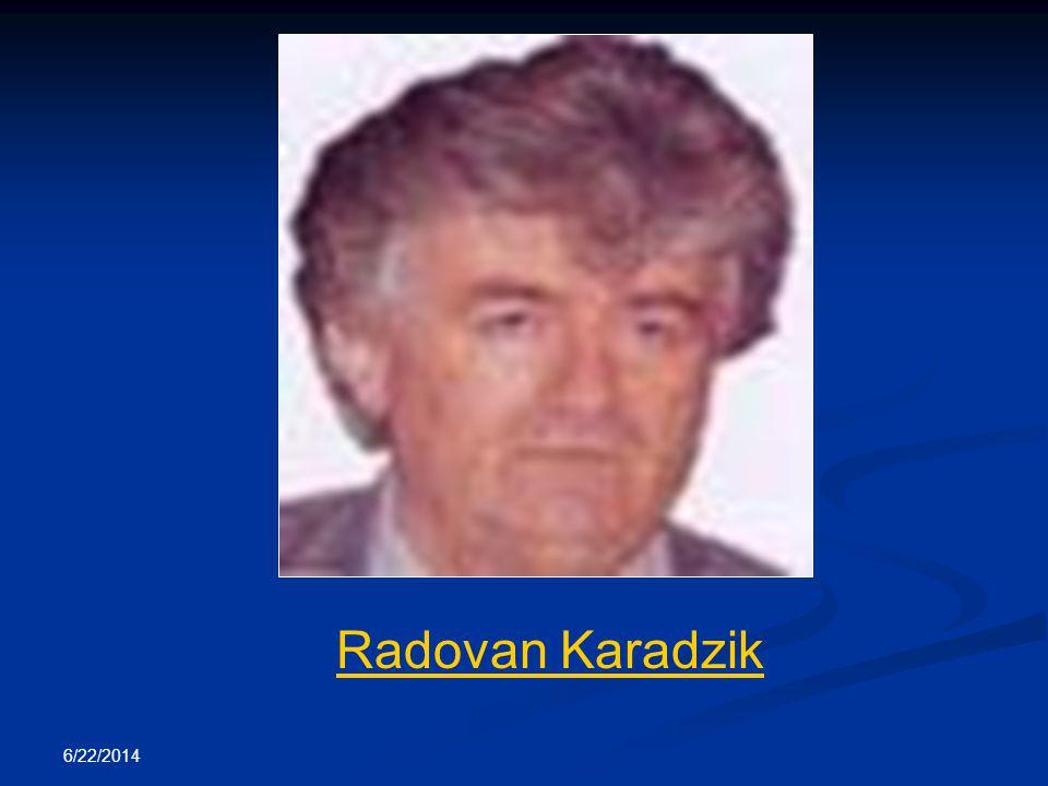 Radovan Karadzik 4/3/2017