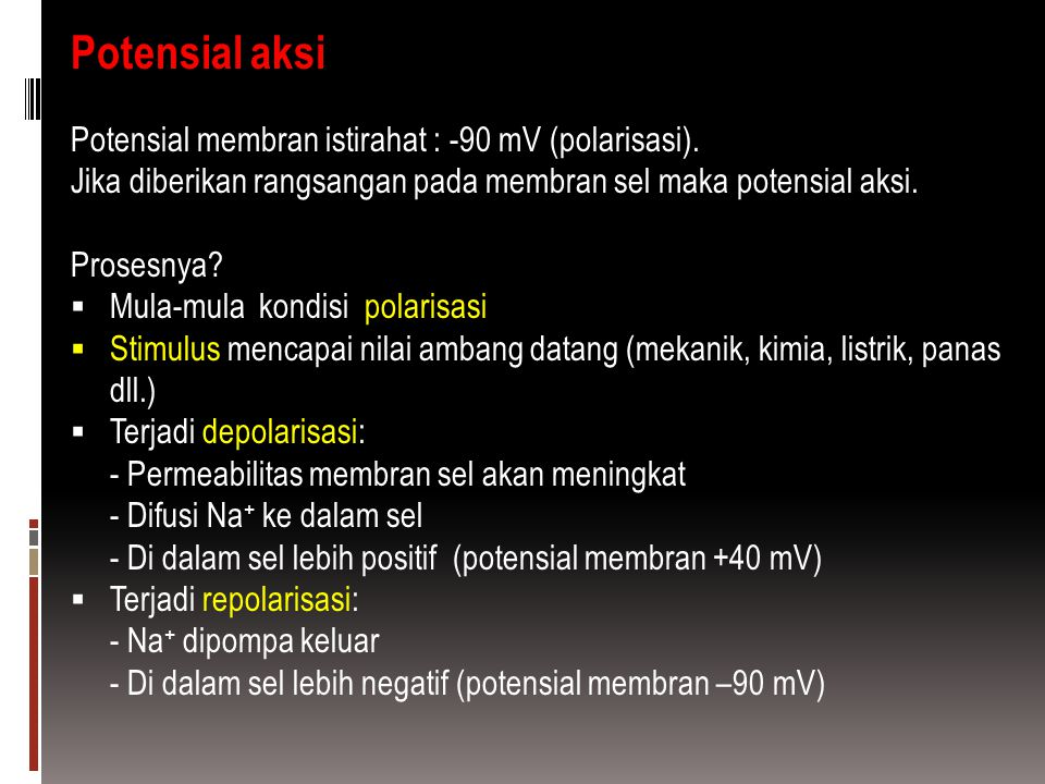 Potensial aksi Potensial membran istirahat : -90 mV (polarisasi).