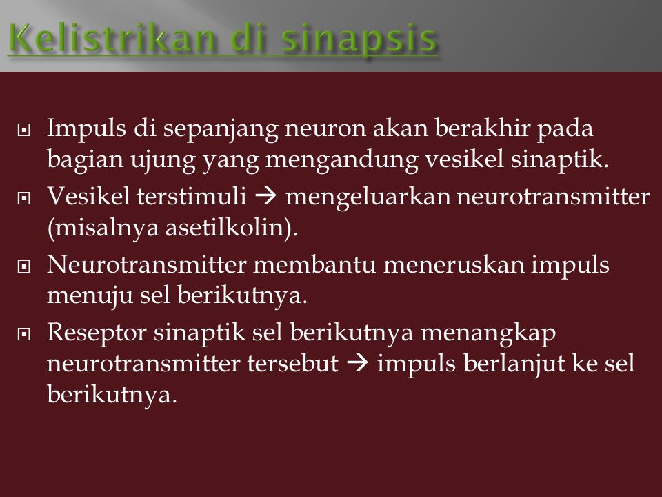 Kelistrikan di sinapsis