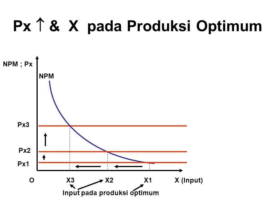 Px  & X pada Produksi Optimum