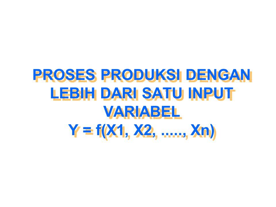 PROSES PRODUKSI DENGAN LEBIH DARI SATU INPUT VARIABEL Y = f(X1, X2,