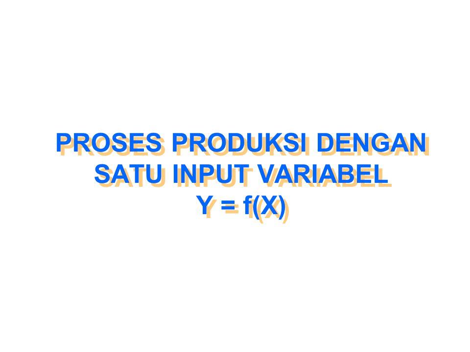 PROSES PRODUKSI DENGAN SATU INPUT VARIABEL Y = f(X)