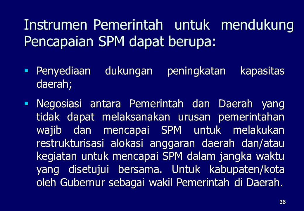 Instrumen Pemerintah untuk mendukung Pencapaian SPM dapat berupa: