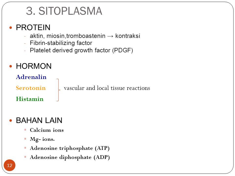 3. SITOPLASMA PROTEIN HORMON BAHAN LAIN Adrenalin