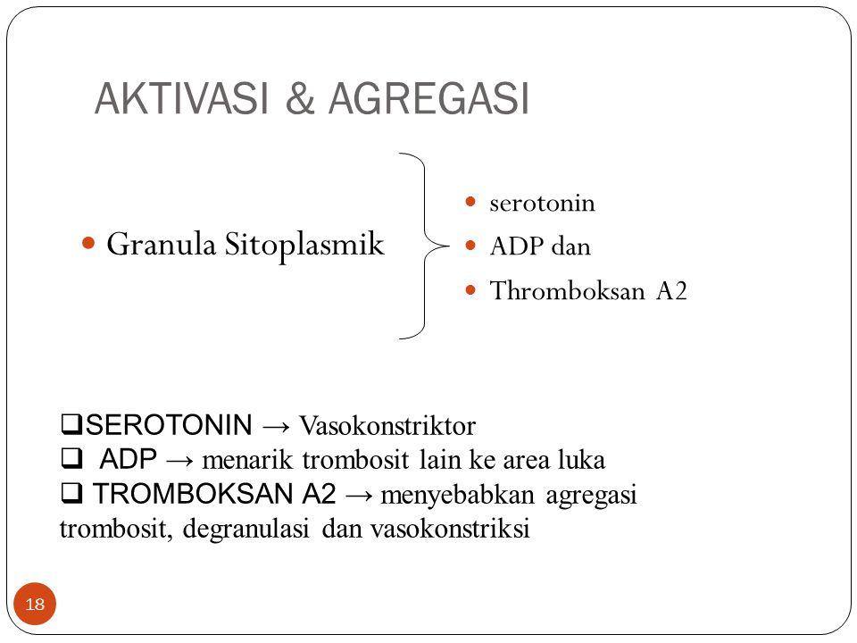 AKTIVASI & AGREGASI Granula Sitoplasmik serotonin ADP dan